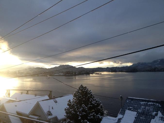 December morning glory